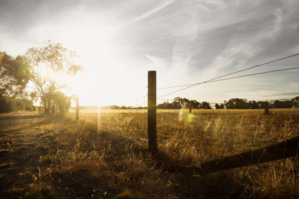 Grampians, Victoria, Australia, Sunset at a farm in the bush with long fence and flare, Airport landing strip