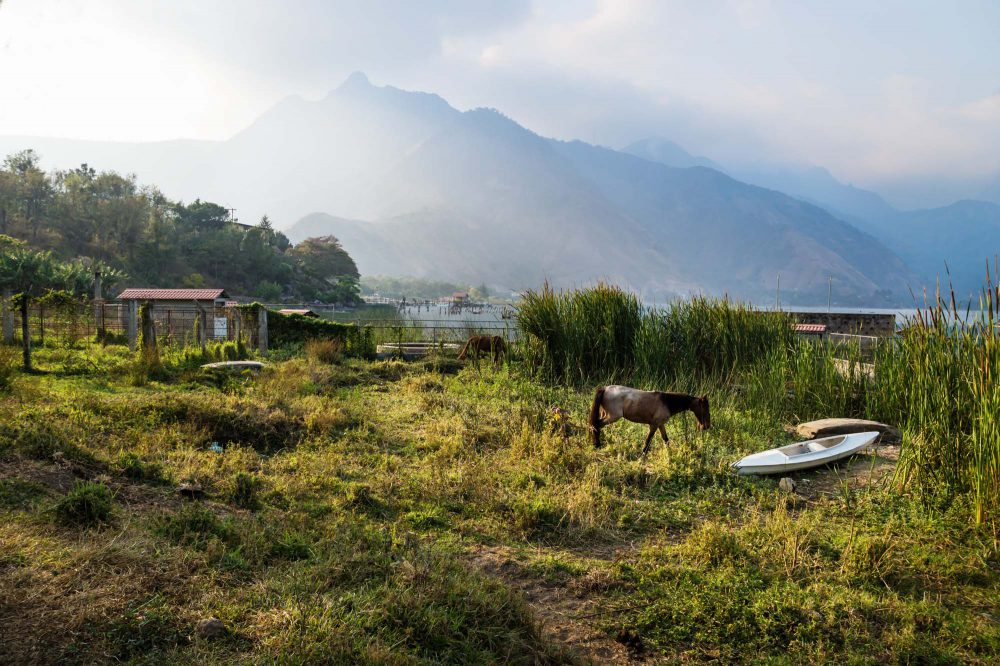San Juan la Laguna, Guatemala, Horse and a canoe on a meadow along lake Atitlan with backlightened volcanic mountainrange, Central America