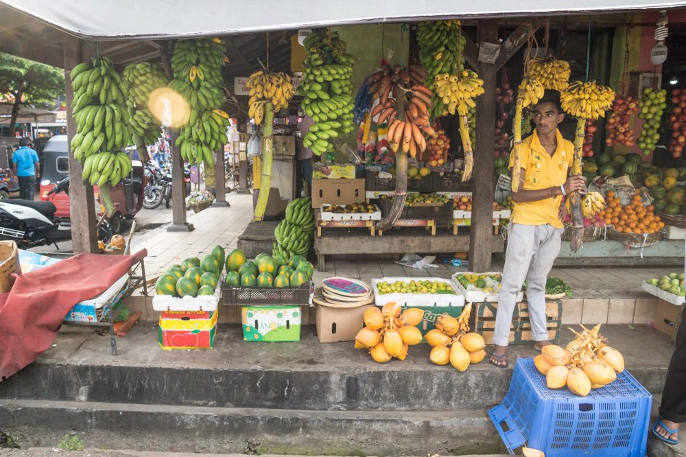 Market seller standing at a stall in Galle, Sri Lanka with different types of bananas and fruits