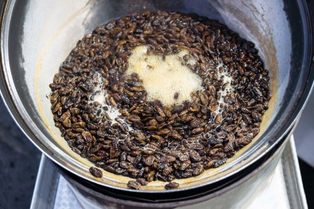 Pot with boiling beondegi, Silkworm pupae, Korean Streetfood at Jeju Island, Seogwipo