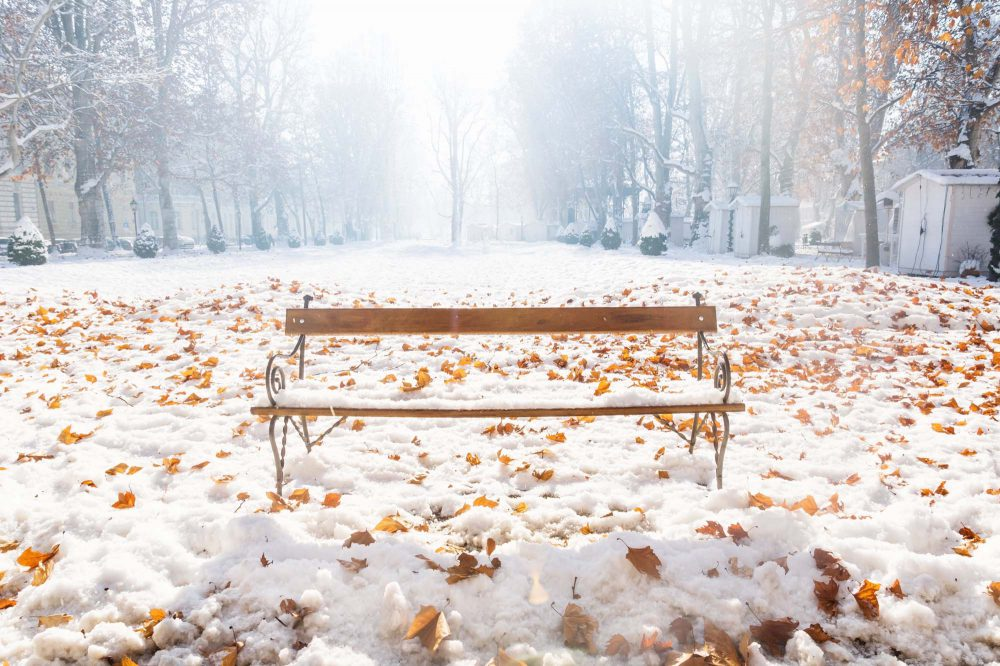 Bench in the snow during sunny weather with orange autumn leaves in Zrinjevac Park, Zagreb, Croatia